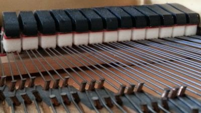 A piano's dampers resting on its strings – a Steinway grand piano