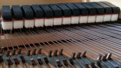 A piano's dampers lifted off of the strings (when the damper pedal is pressed)